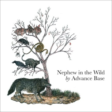 AdvanceBase_NephewInTheWild
