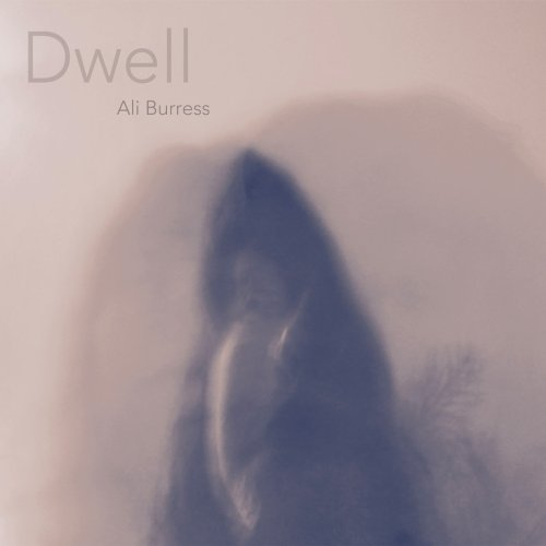 aliburress_dwell